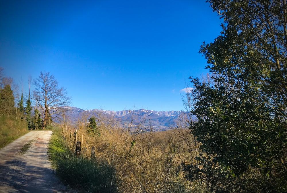 Arrivare a Loppiano per sentieri