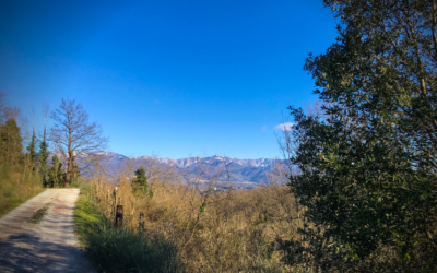 Getting to Loppiano by footpath